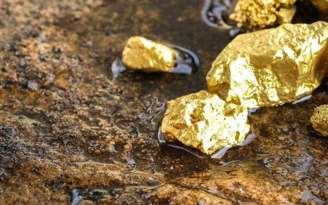 The Best Metal Detector for Finding Gold (And 4 Runners Up)